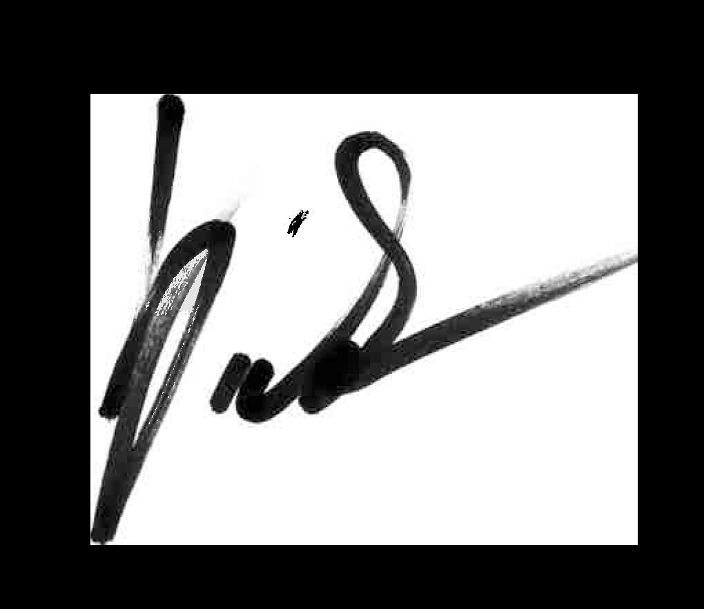podpisB